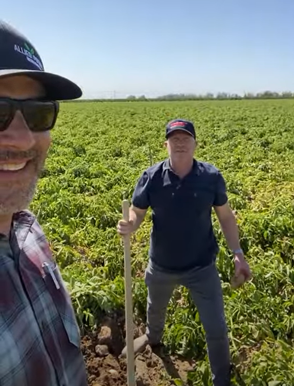 NEW CROP Spuds….Pre-Harvest and Harvest Insights 6/1  PART 1 of 2